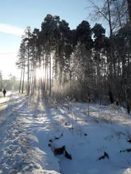 Frosty morning [4] by KaomaTheCat