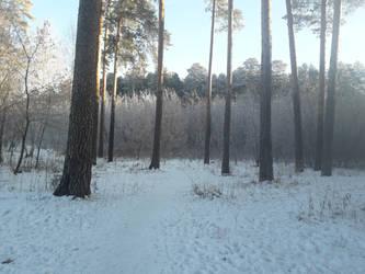 Frosty morning [6] by KaomaTheCat