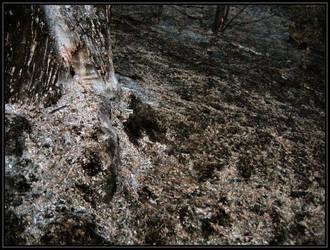 Charred Land by Kell-core