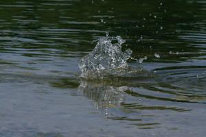 Water splash - 5 by Seductive-Stock