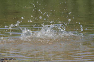 Water splash - 6 by Seductive-Stock
