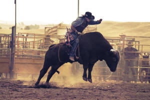 jumping bull by Valad-the-impaler