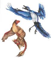 Archaeopteryx and Microraptor by wyrdgrendel