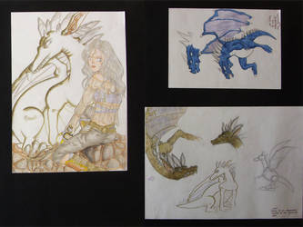 Dragons -- concept art by simoneines