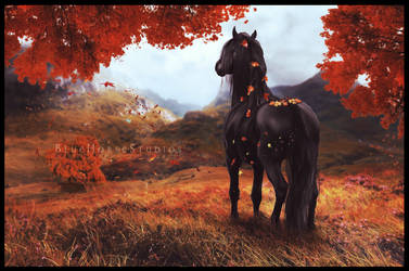 Cool Autumn Morning by Sword-Cross