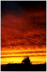 Azorian Sunset by hatha