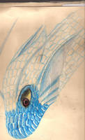Portfolio Water Dragon by Marraphy