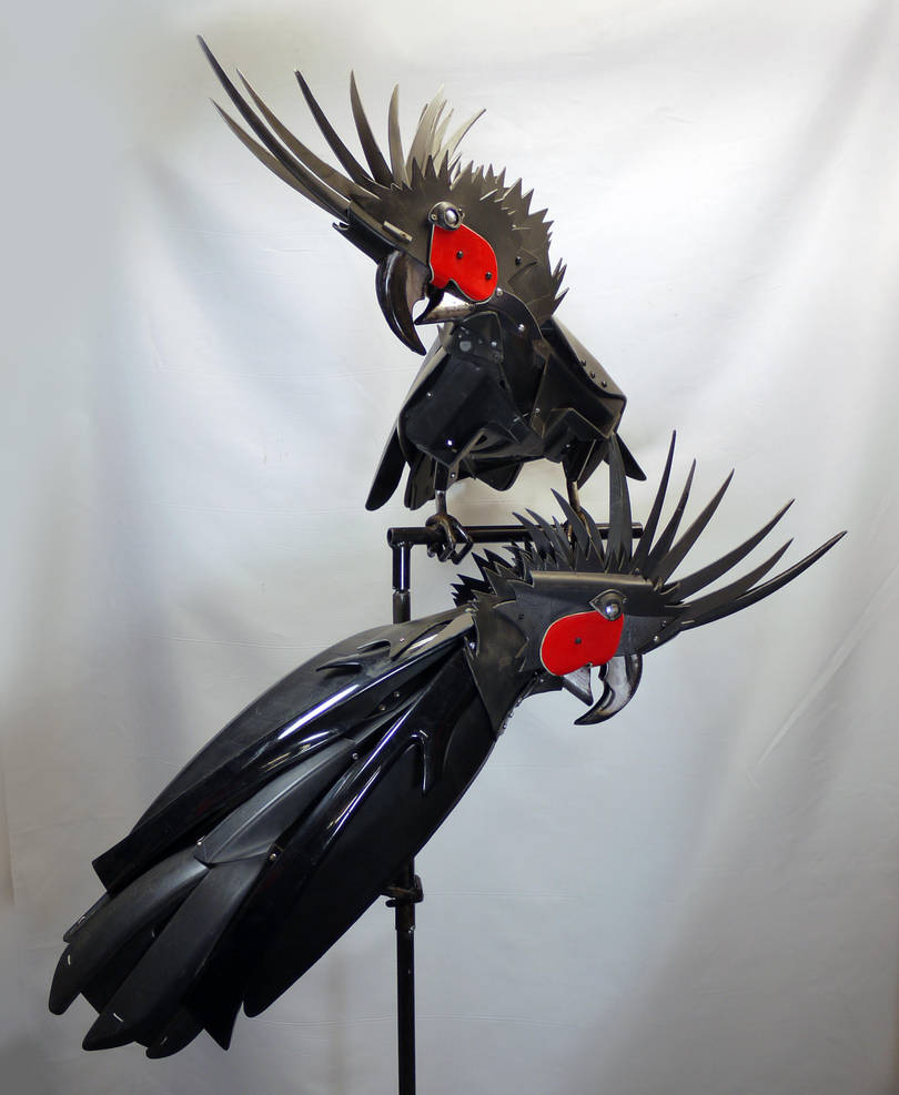 Palm Cockatoos by HubcapCreatures