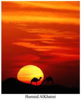 Camel by aLdEeb