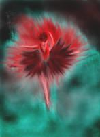Ballerina Red by Butch-Gunter