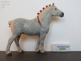 Collection Images: Percheron by Safari by CarolaFunder