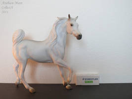 Collection Images: Arabian Mare by CollectA by CarolaFunder