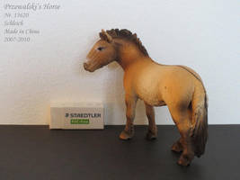 Collection Images: Przewalski by Schleich by CarolaFunder