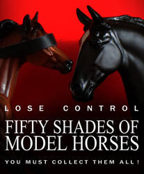 Fifty Shades Of Model Horses by CarolaFunder
