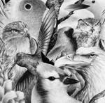 Birds by doant