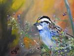 White-throated Sparrow by CarolynYM