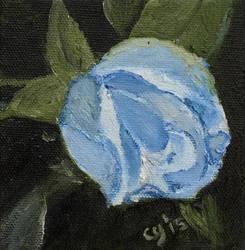 Blue Rose by CarolynYM
