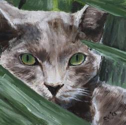 Green Eye Cat by CarolynYM