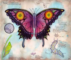 Majora Larvatum Papilio by Verde13