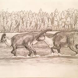 Parasaurlophus Pair by DinoHunter000