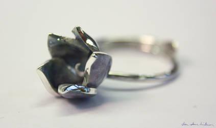 Enameled ring by stian-c