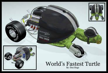 Fastest Turtle by SpookyDan