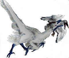 Saurornitholestes by Durbed