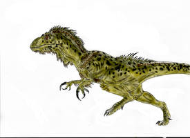 Megaraptor by Durbed