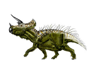 Triceratops prorsus by Durbed