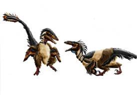 Achillobator giganticus by Durbed