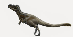 Daspletosaurus torosus by Durbed