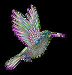 Colibri-aves-colores-degradados-fintros-inkscape-3 by Creaciones-Jean