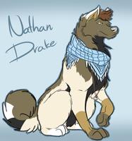 Nathan Drake wolf by Joki-Art