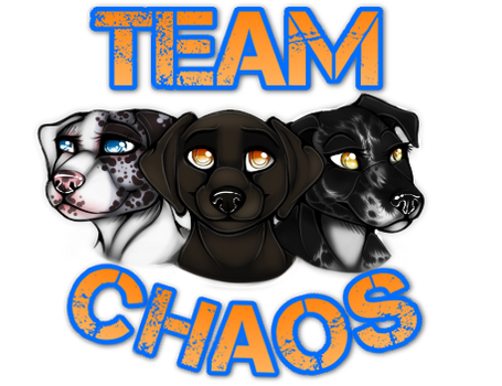 Team Chaos by AethonGryphon