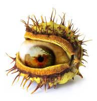 Chestnut Eye by oilcorner