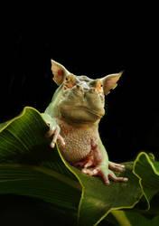 Hippofrog 2 by oilcorner