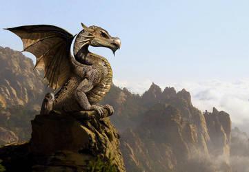 Dragon by oilcorner