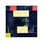 Mondrian Jungle by cameraflou