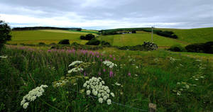 A Piece of Aberdeenshire. by sags