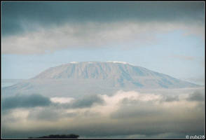 Safari - Mount Kilimanjaro by rubi28
