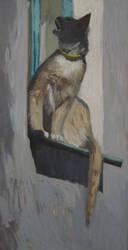 cat by HeleneNekrashevich