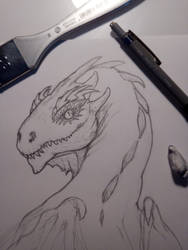 casual dragon wip by OcioProduction