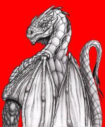 Dragon redback by OcioProduction