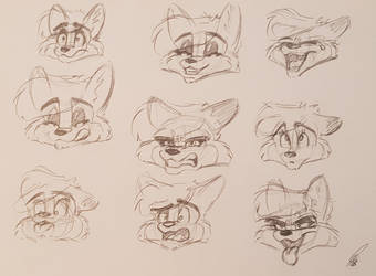 Warmup Expressions by SierraRomeo