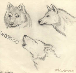 Wolves doodles by Erwanna-Dragony