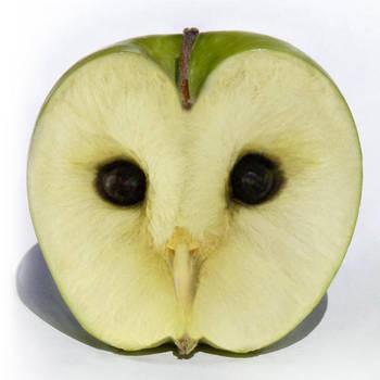 Apple Owl by megaossa