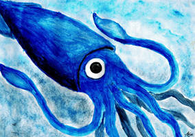 Humboldt Squid by anzahanifathallah