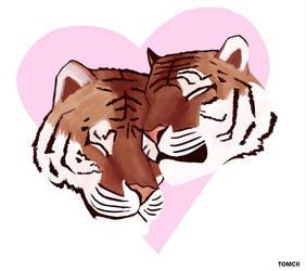 Happy Valentines Day by Tom-Cii
