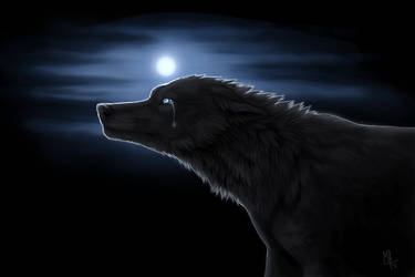 never sight for better world by wolf-minori