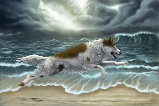 Run away before the storm by wolf-minori
